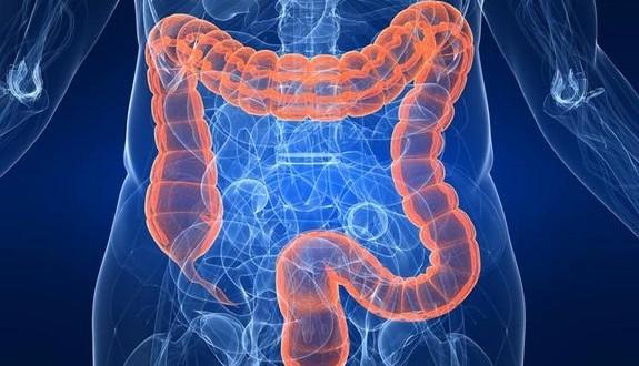 Detoxifierea timp de doua zile a intestinului gros