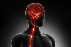 Detoxifierea sistemului nervos