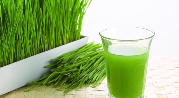 Beneficiile consumului de suc de grau
