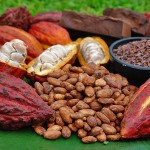 Boabele de cacao