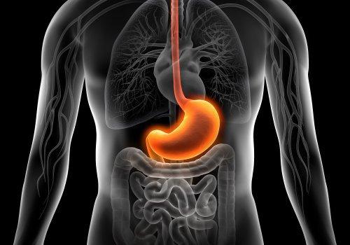 Dieta pentru gastrita