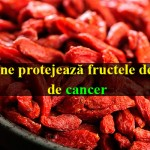 goji cancer