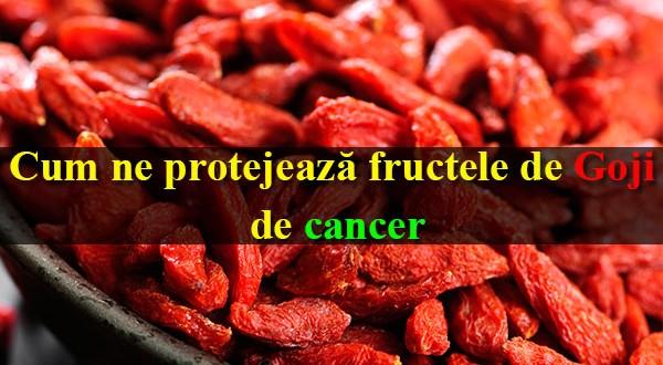Cum ne protejează fructele de Goji de cancer
