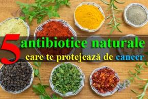 Top 5 antibiotice naturale care te protejează de cancer
