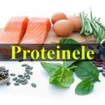 proteine bune